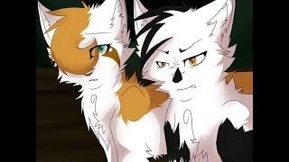 коты воители // яролика и быстролап