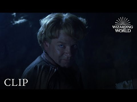 Gilderoy Lockhart Loses His Memory | Harry Potter and the Chamber of Secrets