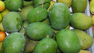 Kacha Aam Masala | Yummy Green Mango Masala | Kacha Aam Makha | Indian Street Food | Kolkata