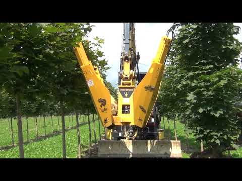 280i 4 Blade Excavator-mounted Tree Spade - YouTube