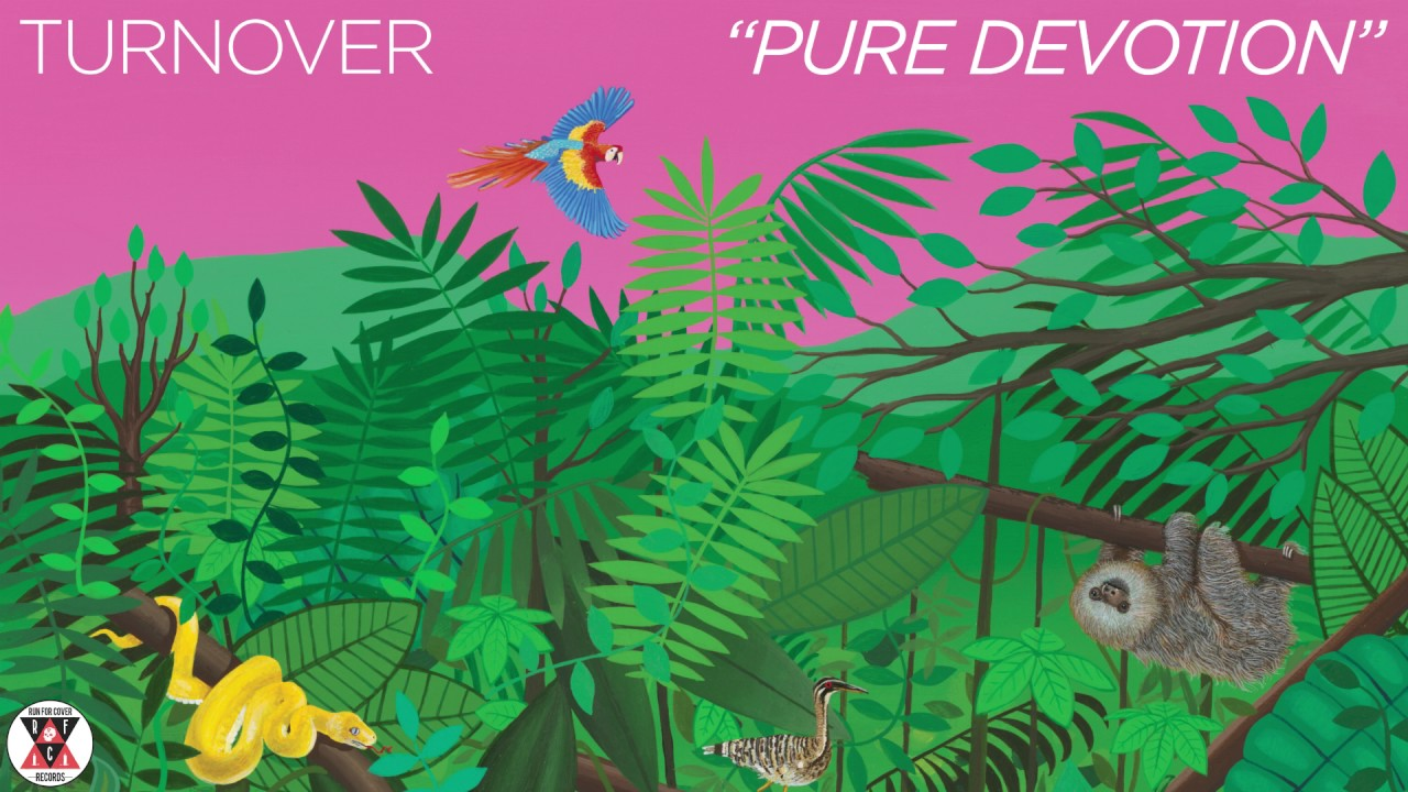 turnover-pure-devotion-official-audio-run-for-cover-records
