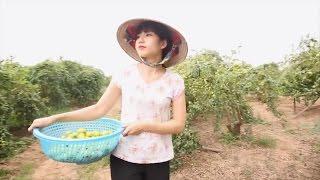 Gái Làng Tồn Full HD | Phim Hài 2017 Mới Hay Nhất