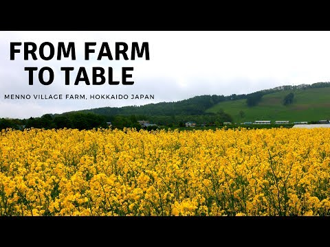 JAPAN 2016 - 2017 ・ From Farm to Table: A Case Study in CSA feat. Menno Village Farm (Documentary)