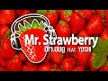 🍓 Dj.AomDoo Feat. YOSHI - Mr.Strawberry (Original Mix) + FREE DL