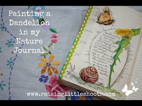 Painting a Dandelion in my Nature Journal