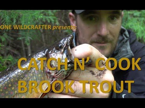 Catch n' Cook Brook Trout