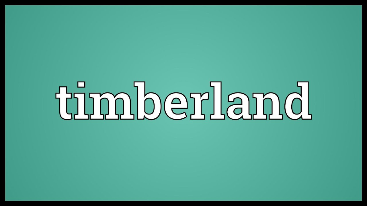 Timberland Meaning Youtube