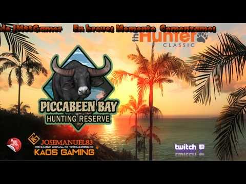 Directo 🔴 The Hunter - Piccabeen Bay buscando el bufaro de oro