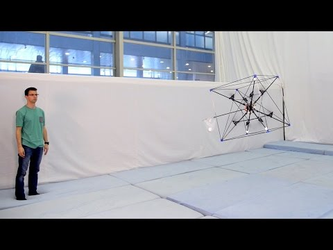 Fetching Omnicopter