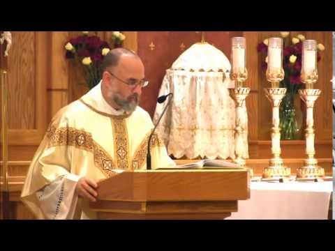 Nov 19 - Homily: St Agnes, Poor Clare with many Coins