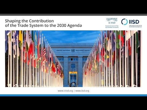 Shaping the Contribution of the Trade System to the 2030 Agenda