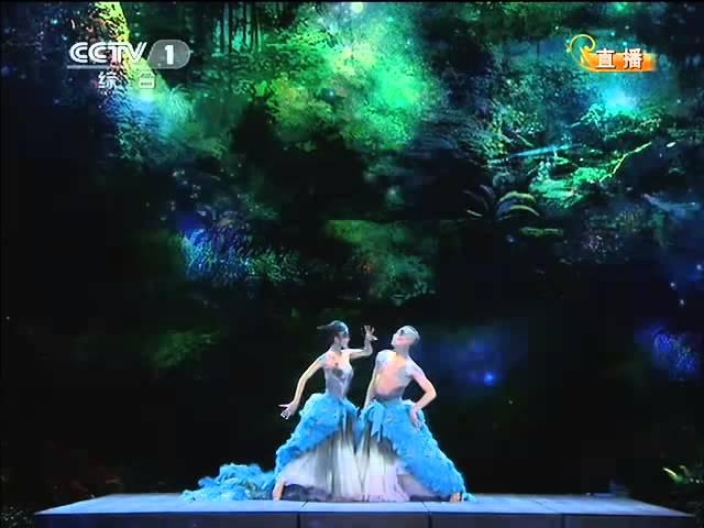 2012央视春节联欢晚会 舞蹈《雀之恋》杨丽萍 王迪| CCTV春晚