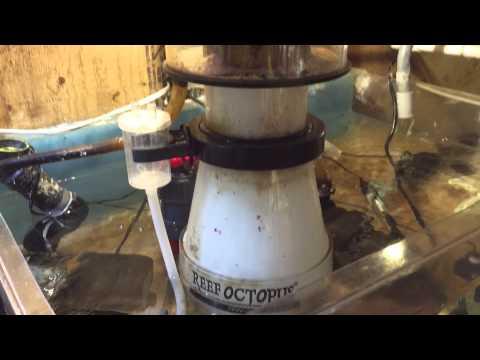 Basement Sump Setup That's Runs My 220 Gallon Reef Tank.