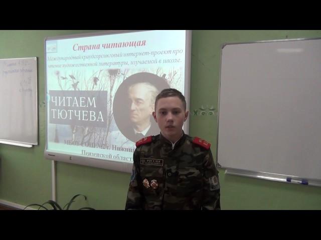 Изображение предпросмотра прочтения – СергейБуренков читает произведение «Глядел я, стоя над Невой» Ф.И.Тютчева