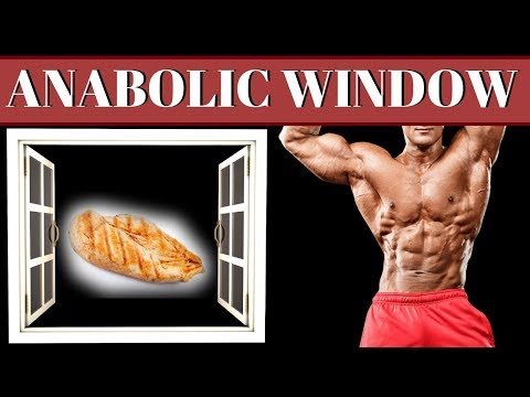 Post Workout Window For Muscle Building