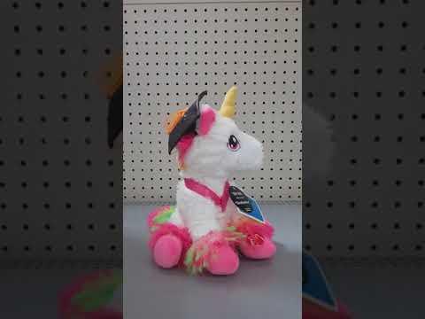 Dan Dee singing spinning graduation unicorn