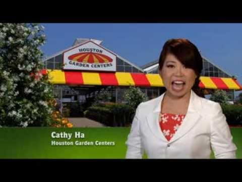 Houston garden centers with cathy ha youtube Houston garden centers houston tx