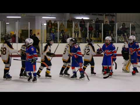 2017 Silver Sticks Squirt AA Championship