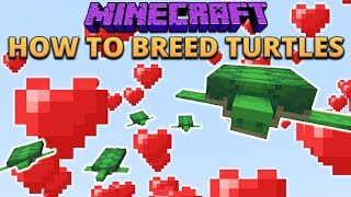 Minecraft 1.13 How To Breed Turtles! & Other Things I Missed From Snapshot 18w07a