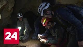 В Крыму обнаружили пещеру с новым видом микроорганизмов и костями древних животных - Россия 24