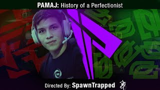Pamaj: History of a Perfectionist - Road to 2 Million Subscribers (Ft. Witt Lowry Music)