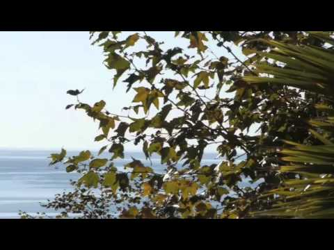 Seasons in Malibu Video - Malibu, CA United States