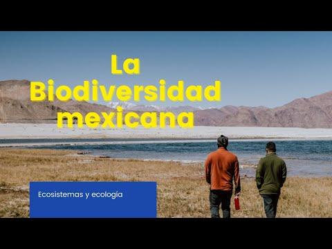 Download La Biodiversidad Mexicana