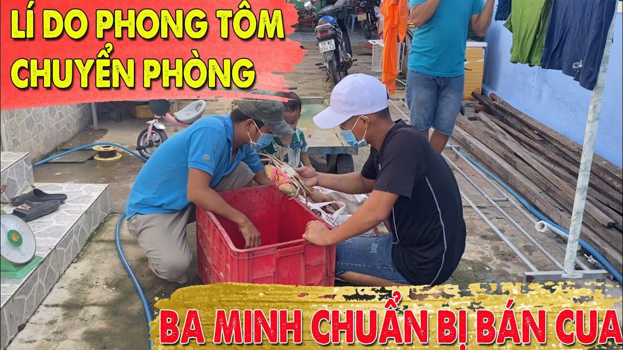 Tiết lộ lí do Phong Tôm chuyển phòng, Ba Minh chuẩn bị bán cua|CANAXIMUOI CHANNEL