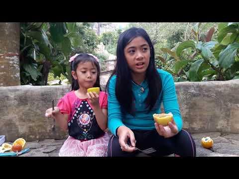 🍊 ORANGE PASSION FRUIT vs. 🍋 YELLOW PASSION FRUIT (Part 2)