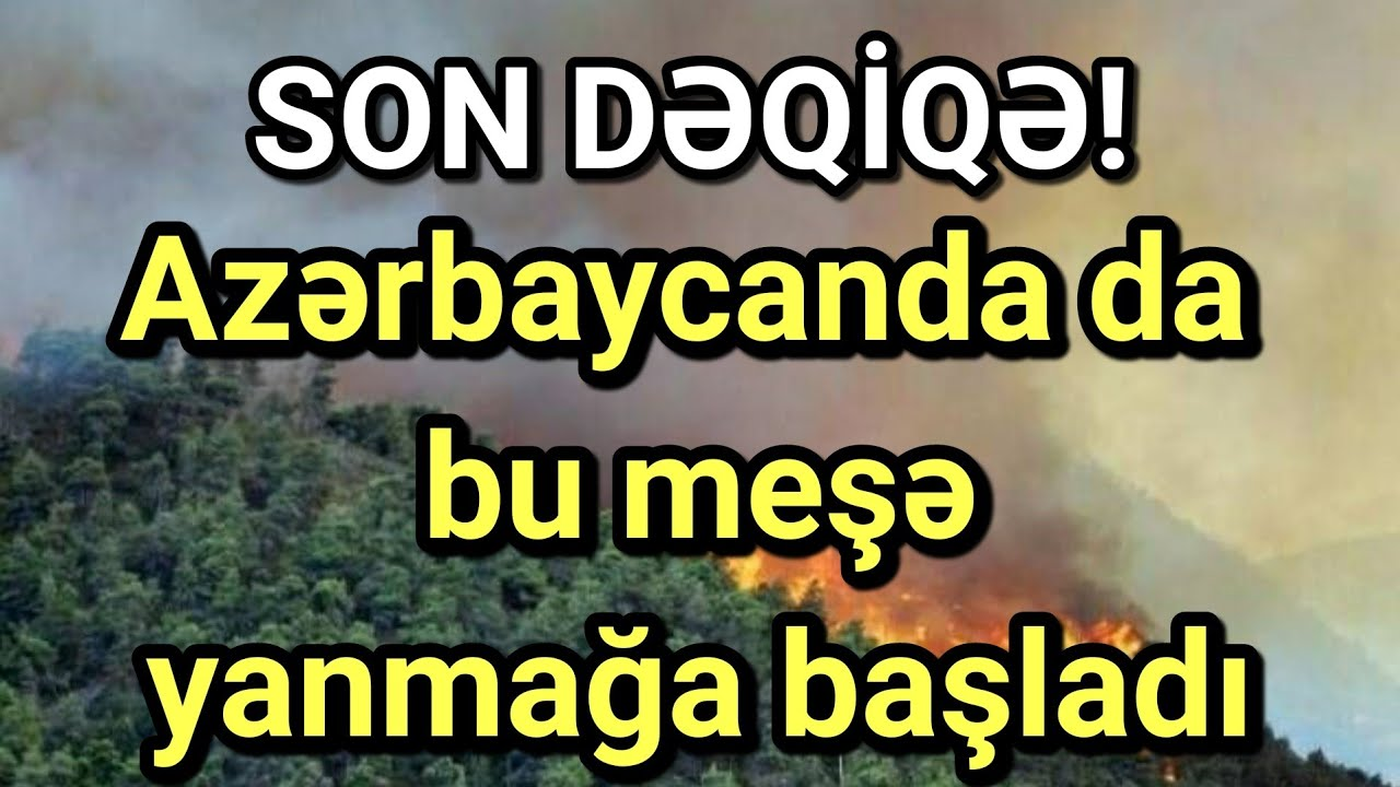 Azərbaycanda da bu meşə yanmağa başladı- SON DƏQİQƏ
