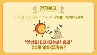 [한국인삼협회] 자외선에 상한 피부, 인삼이 지켜드려요…