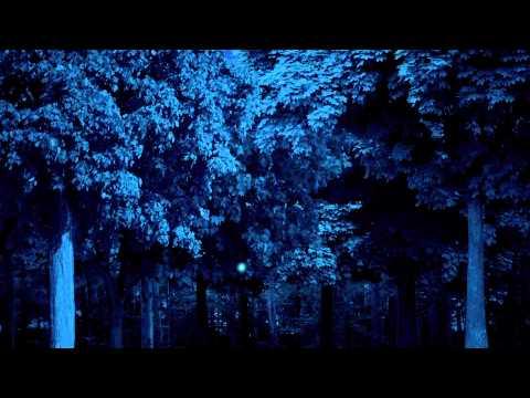 Jess Moskaluke - Everything Falls - Official Lyric Video