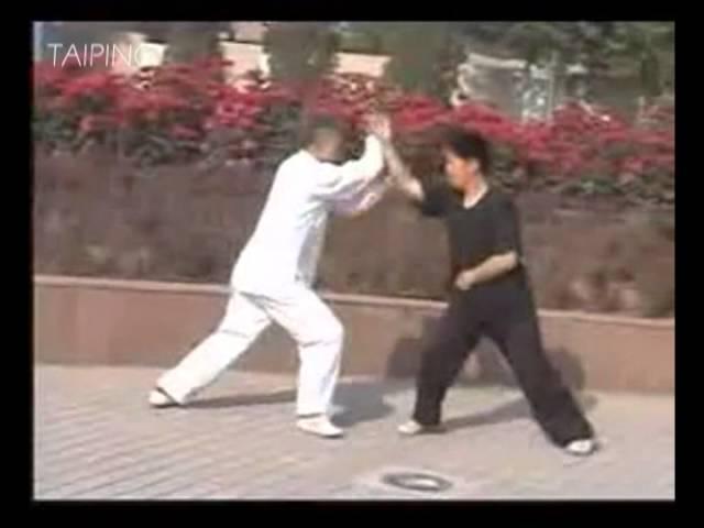 Xing yi - An Shen Pao ( 形意拳 - 安身炮)