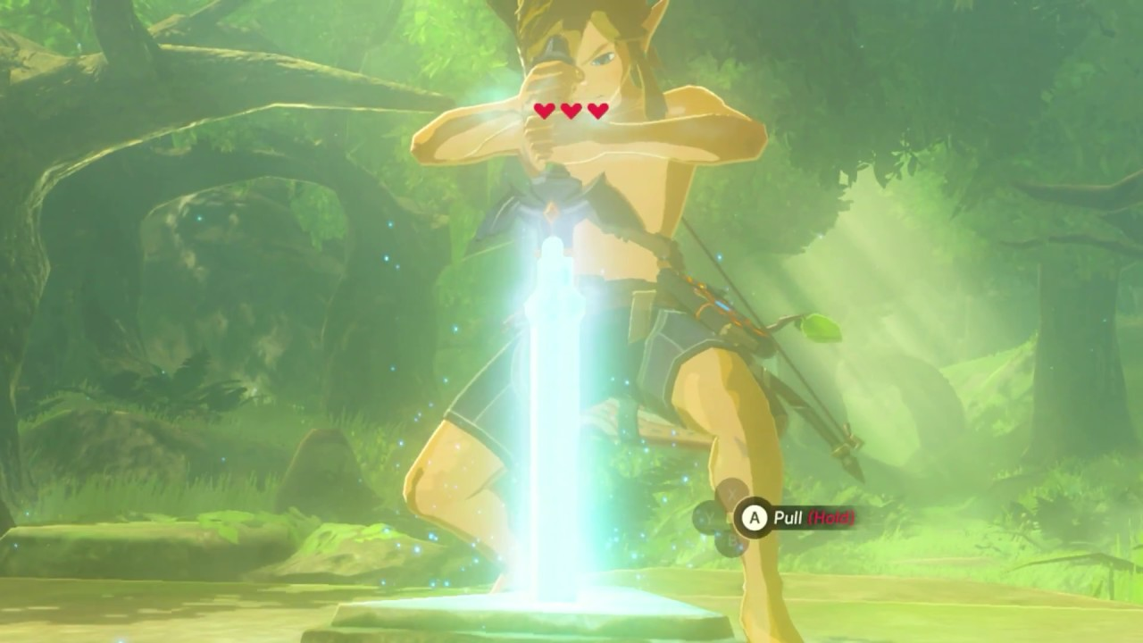botw pulling the master