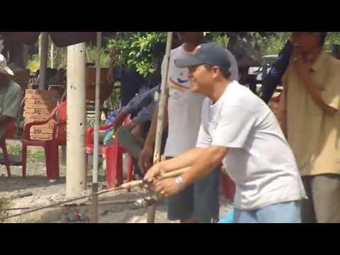 Câu cá lóc to 2kg2 -  hồ câu cá Vĩnh Lộc 6 , Hồ câu cá,