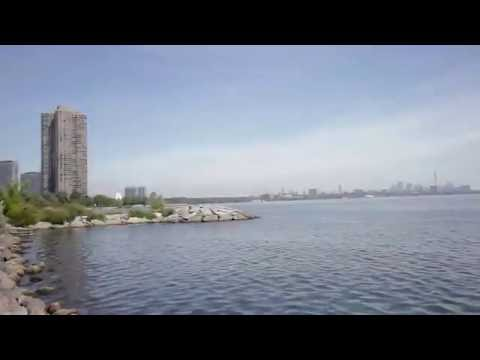 80 Marine Parade Dr #1503, Toronto