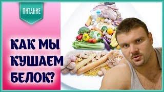 Белковое питание для спортсмена - кое-какие проблемы и их решение...