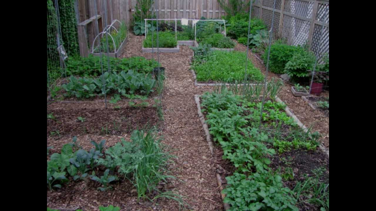 The OYR Garden In Pictures