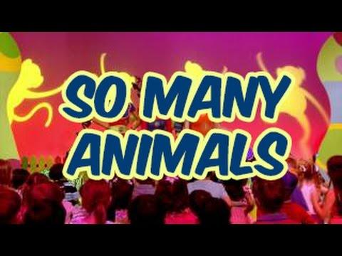 Hi-5 House S14 : So Many Animals
