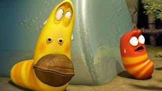 LARVA - WALNUT | Cartoon Movie | Cartoons For Children | Larva Cartoon | LARVA Official