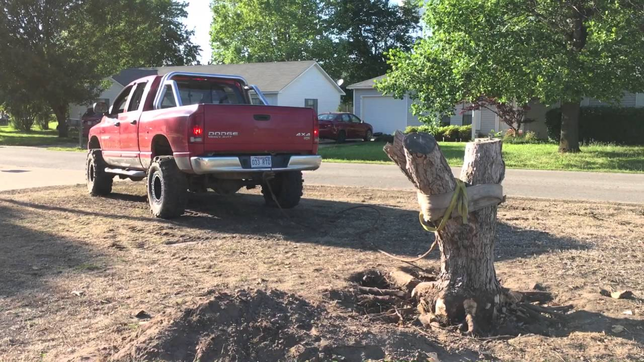 Diy Tree Stump Removal With A Truck