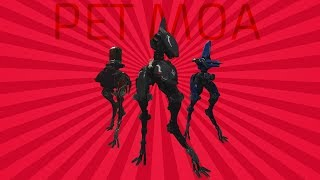 Warframe | Pet Moa Guide