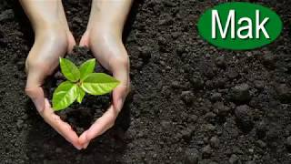 Centrum ogrodnicze sprzęt ogrodniczy Chojna W.F.H.U. Mak Hurt-Detal Usługi BHP Cieślak Henryk