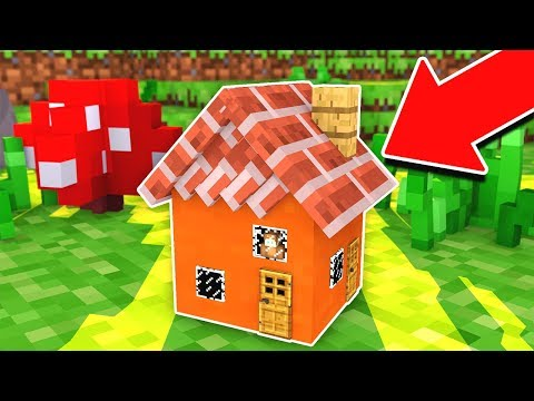 HOW TO LIVE INSIDE THE WORLD'S SMALLEST MINECRAFT HOUSE!