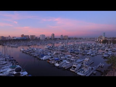 Long Beach Marina | 4k