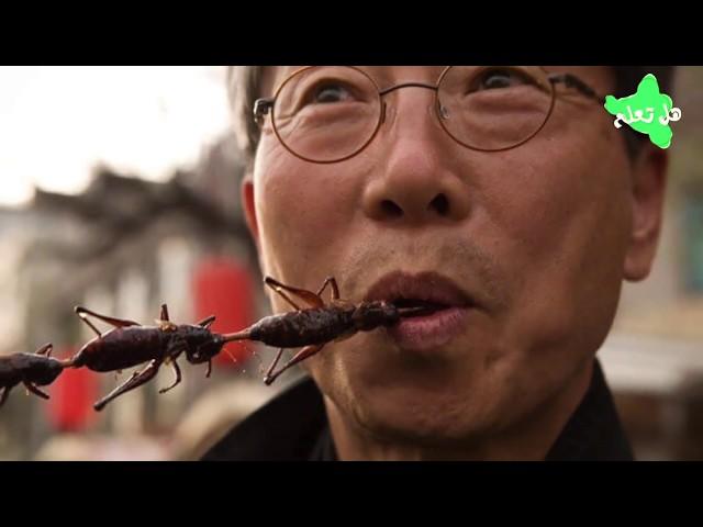 في الصين هناك بشر مكلف لخدمة الصراصير...  ما السبب؟