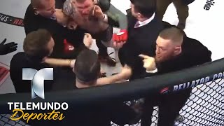 Video Borran a McGregor del UFC 219 por altercado | MMA | Telemundo Deportes download MP3, 3GP, MP4, WEBM, AVI, FLV Oktober 2018