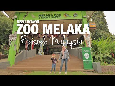 rrvlog#98---zoo-melaka- -malaysia-🇲🇾