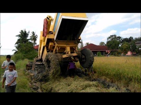 Mesin Padi 8060 LEKAT Dekat Kg Sanglang Perlis Sabtu 280117