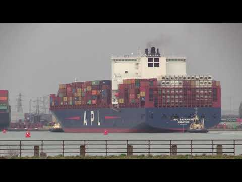 APL Container Ship | APL Savannah arrival into Southampton Docks from Tangier 22/01/19